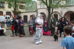 2011-festival-P4030862