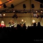 2014_Festival_image (15)